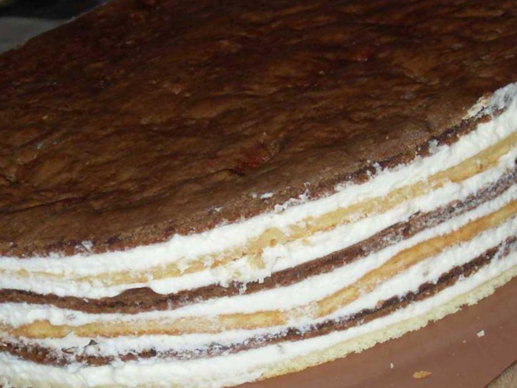 торт мишка пошаговый рецепт с фото