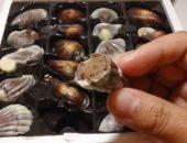 Бельгийский шоколад «Морские ракушки»