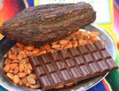 Интересные факты о шоколаде (часть 2)