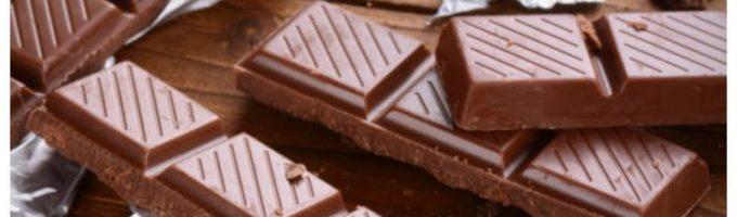 шоколад с насекомыми