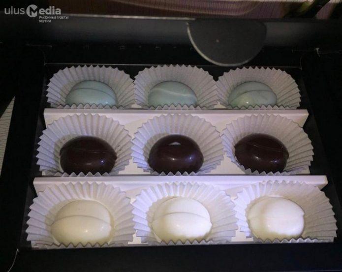 шоколад с ягодами_1