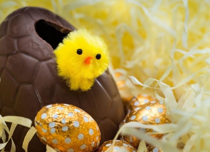 Шоколадное яйцо с цыплёнком