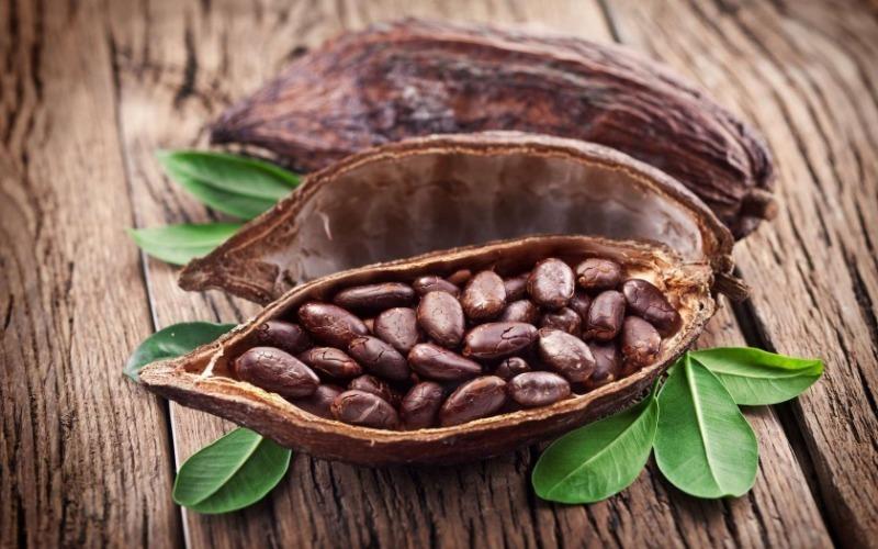 5 особенностей какао, о которых мало кто знает