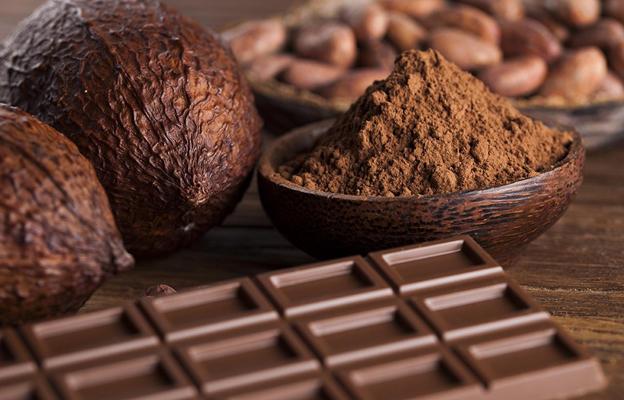 Почему горит шоколад, а не плавится? Представляем научное объяснение явления